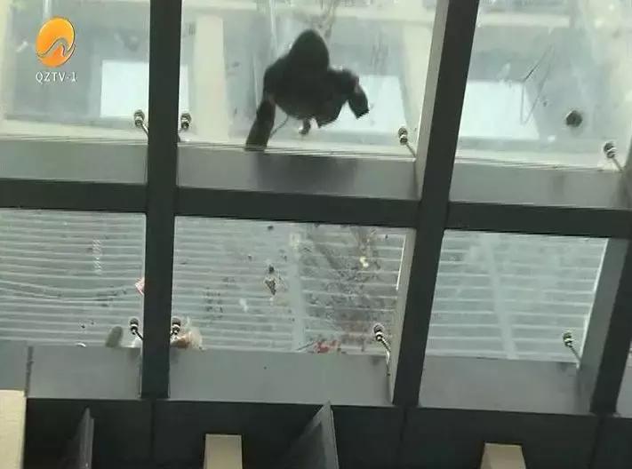 现场令人心碎!晋江4岁男童从13楼意外坠落....事发时父母皆外出