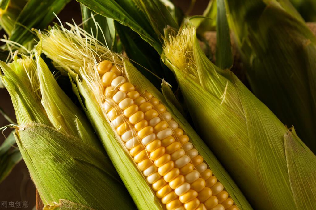 保存玉米,直接冷冻还是煮熟再冻?教你正确做法,玉米新鲜又香甜 美食做法 第4张