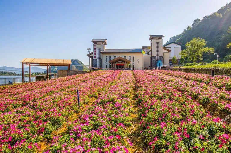 在广东省自驾游度假旅游不愿拥堵,清远市这八个小众旅游景点,每一个都非常值一亏游!