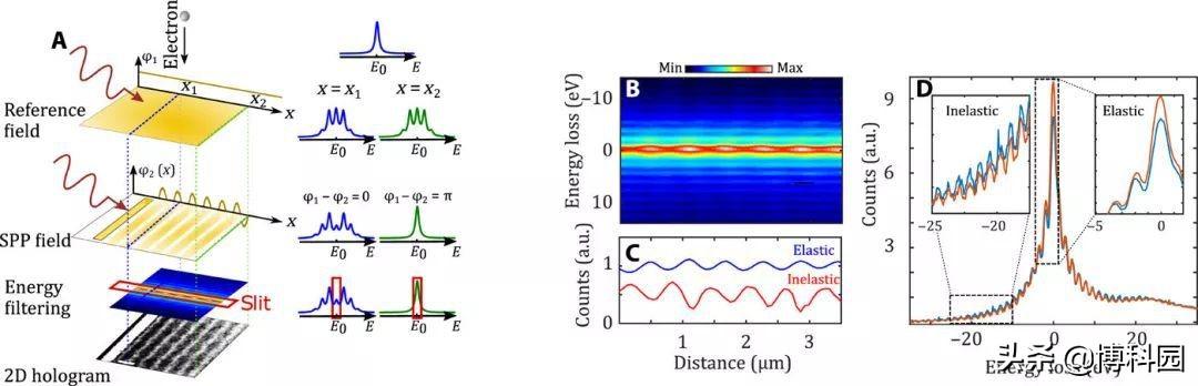 量子全息要来了?已实现电子光量子干涉对电磁场进行全息成像!