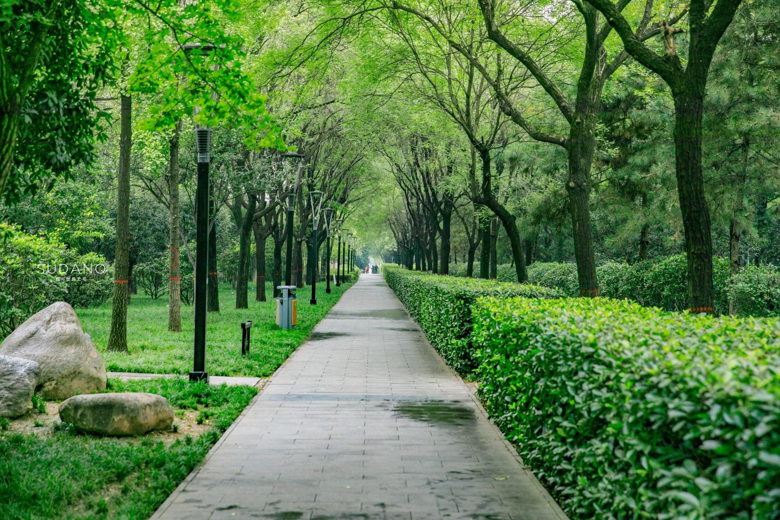 它曾是世界最大城市,如今怎么样了?其部分遗址变成市民公园