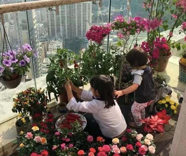 参观陈浩民香港的豪宅,在楼顶打造露台游泳池,能俯瞰维多利亚港