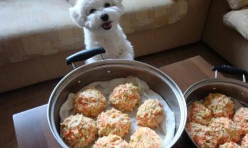 如何自制狗糧?3個配方讓你成為狗糧達人!