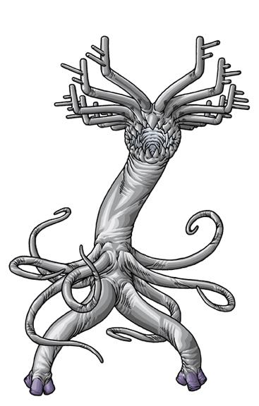 克苏鲁神话生物——塞克洛托尔星怪