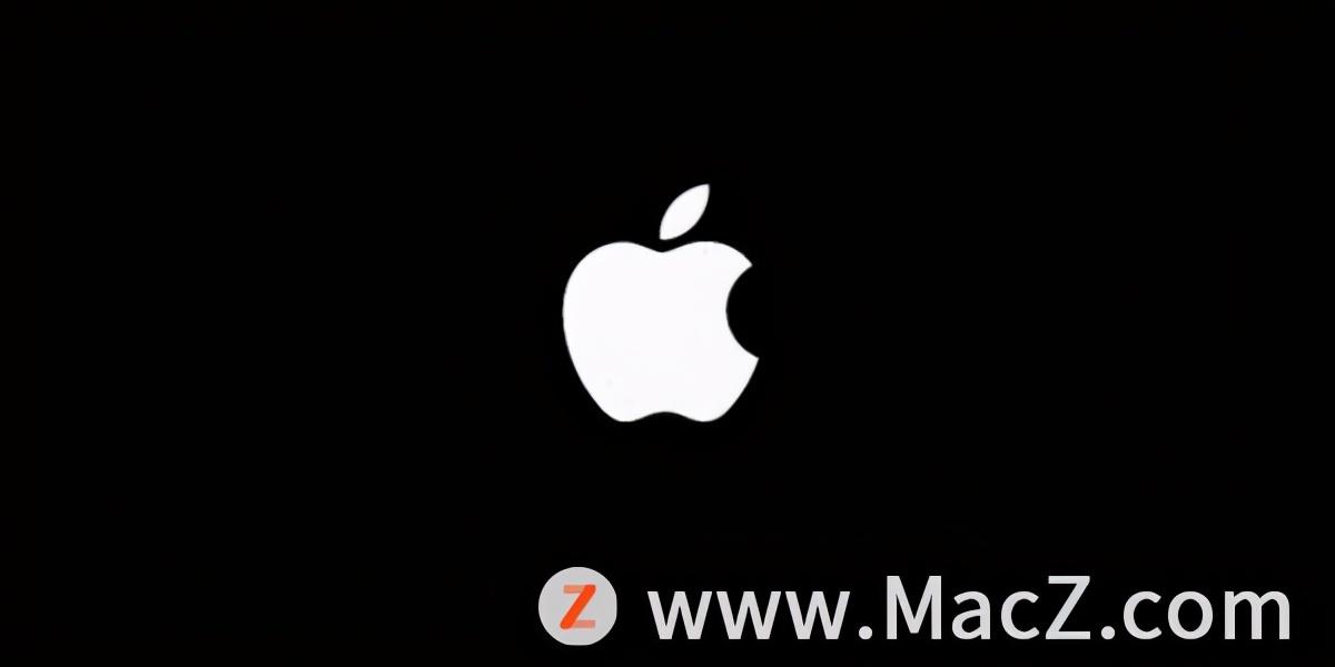 ipad一直卡在白苹果(ipad一直白屏开不了机怎么办)