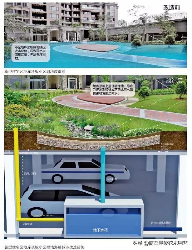 24種海綿城市設計措施經典全圖解!你可以不會施工,但是你要了解