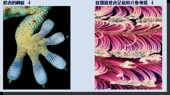 科普:闫鹏勋 — 改变我们生活的神奇纳米技术