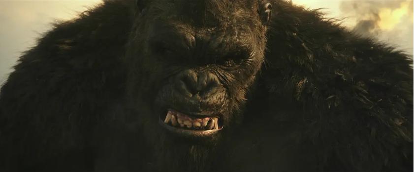 """哥斯拉赢了金刚?新作没有片尾彩蛋,""""怪兽宇宙""""系列要完结吗?"""