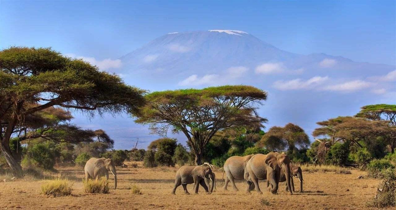 非洲的伊甸园,位于世界第二大火山口,与月球火山口极为相似-第3张图片-IT新视野