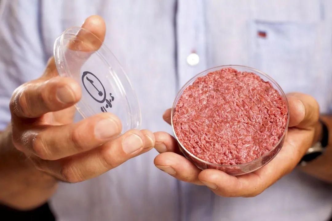 基于草叶子制成的人造肉,你会想尝尝么?