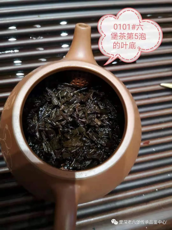 茶休闲:与君共品六堡茶