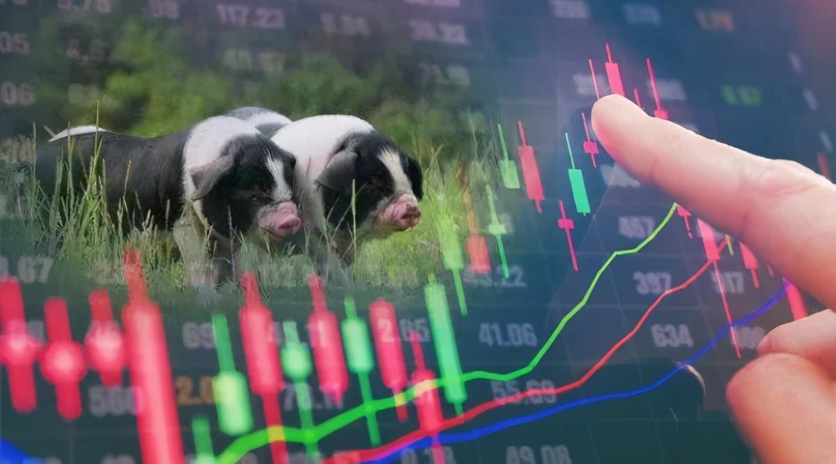 """2021年股市十大板块和十大""""金""""股出炉,您看好哪个呢?"""