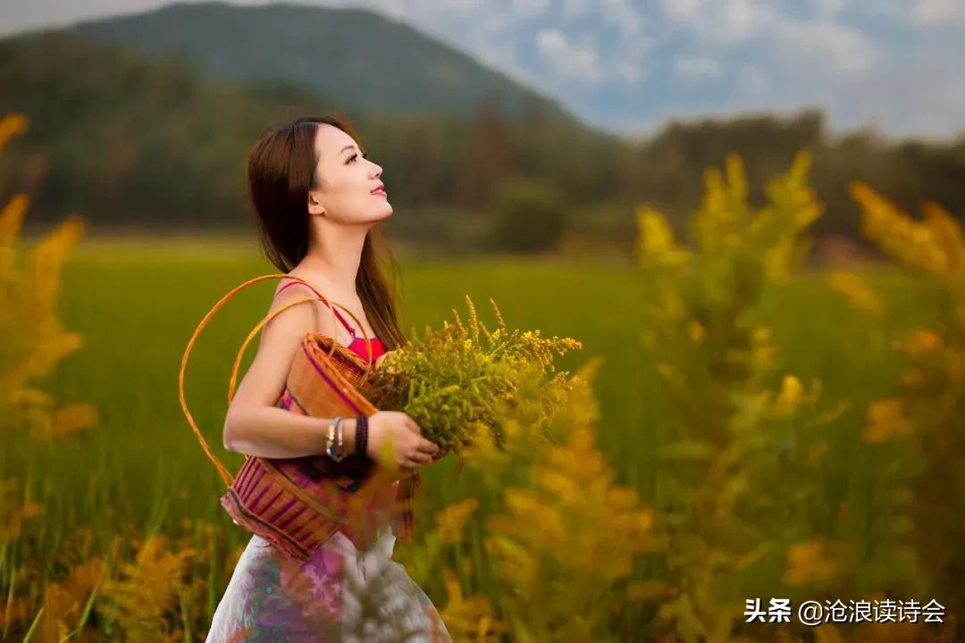 37首律诗写尽秋天之美,心若清凉,风自怡人,感悟人生大境界-第13张图片-诗句网