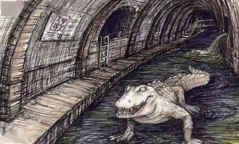 """纽约下水道有鳄鱼?光鲜都市背后的""""阴暗面""""传说源起"""