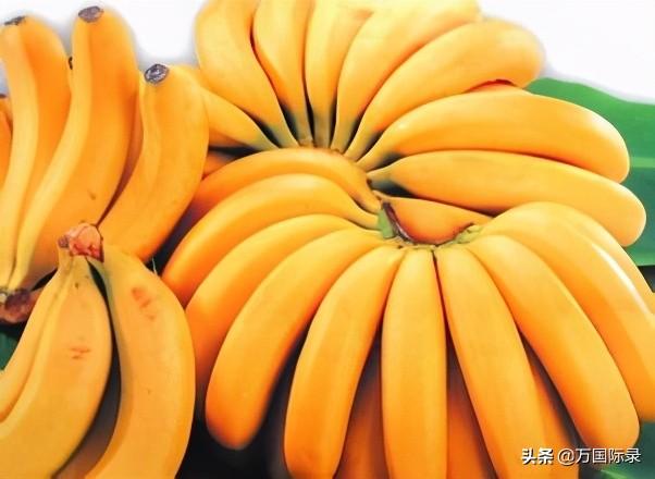 """买香蕉时,如何分辨""""药水香蕉""""?教你3招,一眼就能看出来 安全防骗 第4张"""