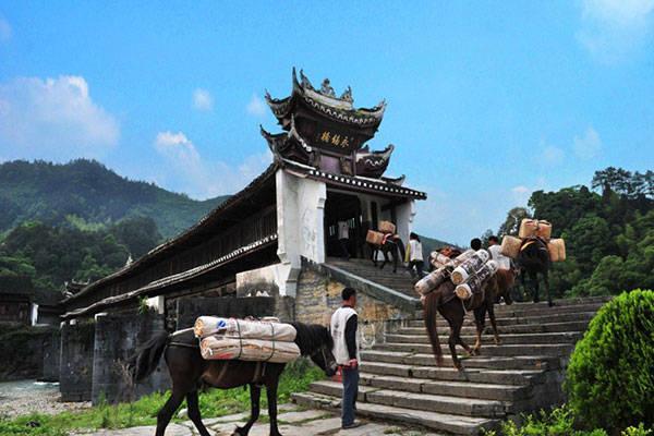 湖南临湘有个镇,人口不足7万,却有超40家ktv,夜晚歌舞不断