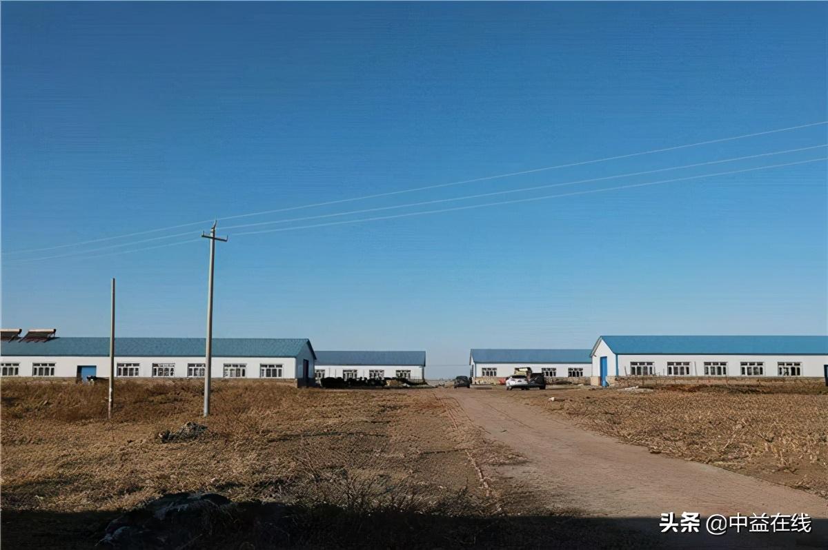 包清海:脱贫路上奏响悠扬牧歌