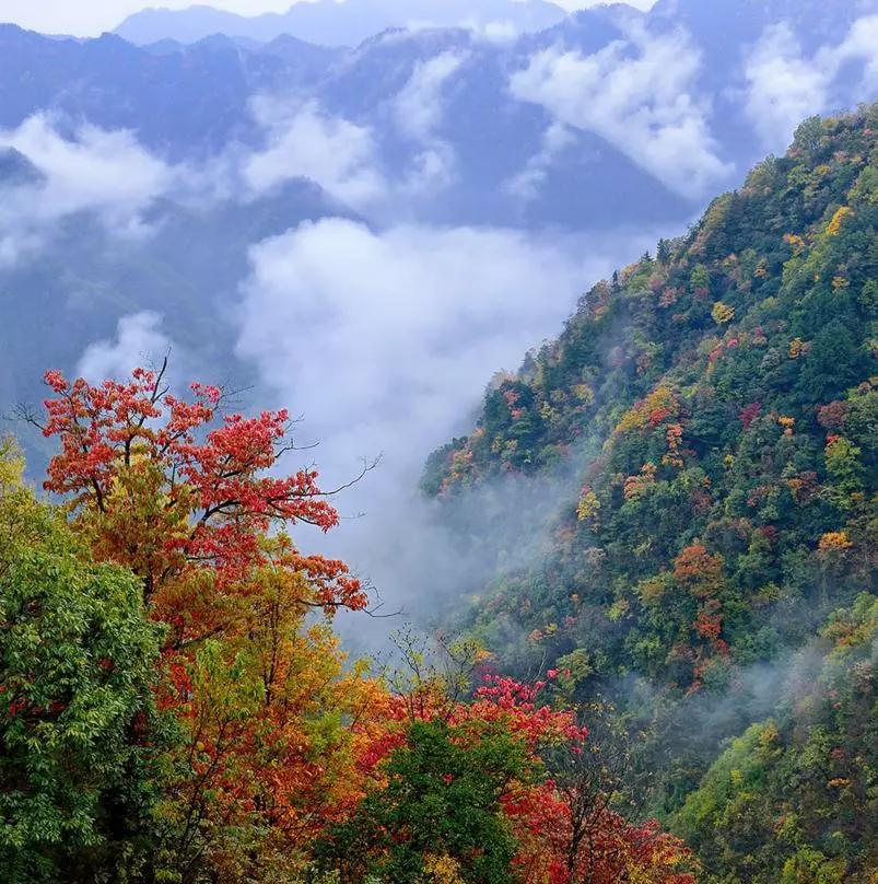 秋天最美的9条神仙级绝美路线,条条惊艳,太适合自驾了