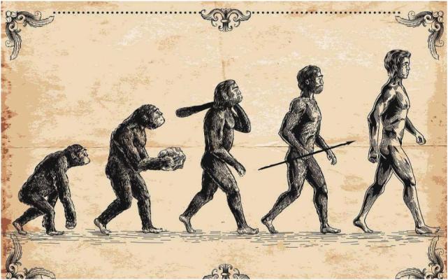 人類進化的過程也是一部滅絕史:北京猿人慘遭屠殺,被當成食物