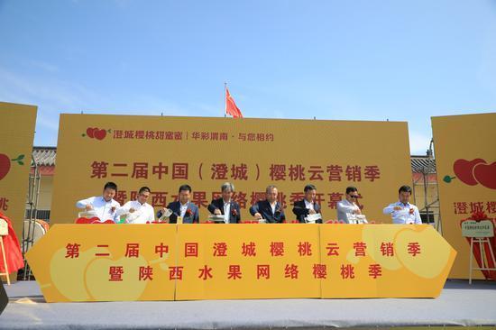 第二届中国•澄城樱桃云营销季开幕 澄城樱桃甜蜜上市