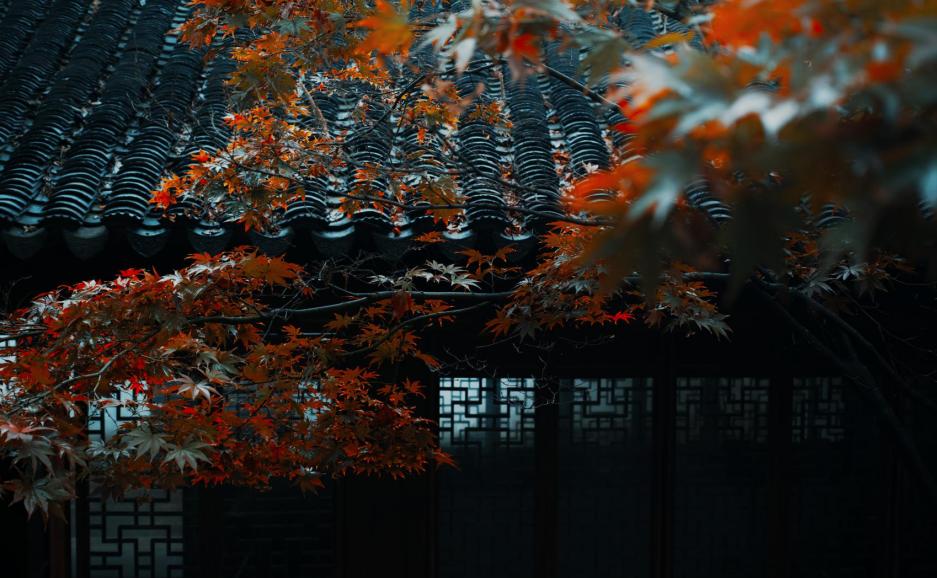 耦园:藏在巷子里的世界遗产,百年前的老夫少妻,把日子过成了诗