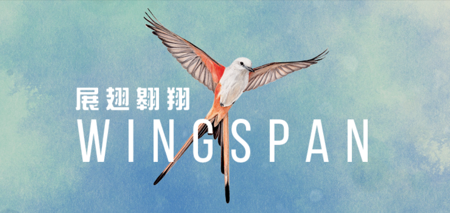 经验报告:不仅是一个游戏,也是一个互动的鸟类百科全书