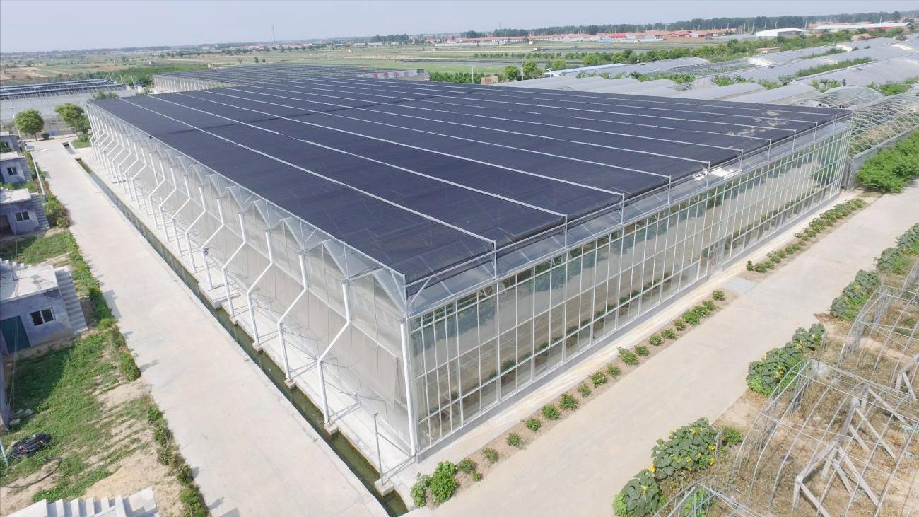 现代设施农业中的玻璃温室是哪一种?