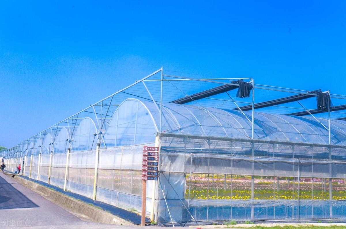 蔬菜种植大棚降低棚内湿度及温度的方法以及途径有哪些呢