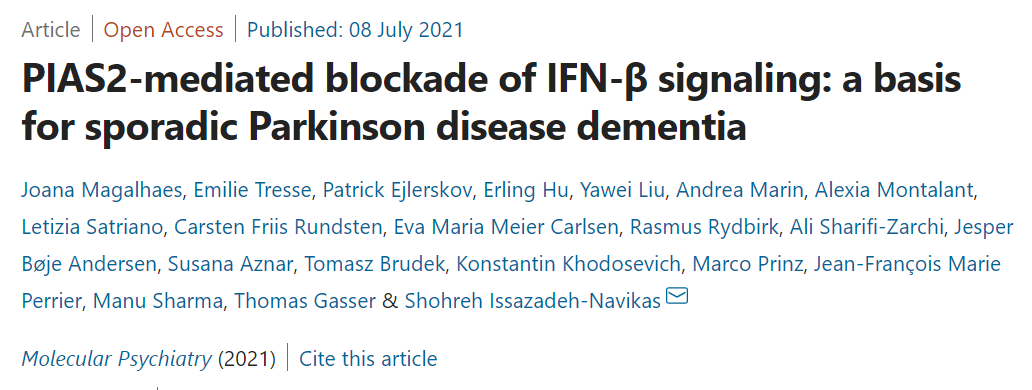 最新研究表明:线粒体功能障碍是帕金森病的主要病因