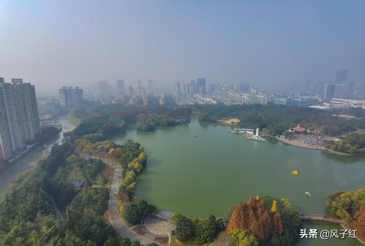 上海五星酒店:上海度假攻略,推个超适宜遛娃的五星旅馆,下战书茶168元一大盘 上海 中谷小南国花园旅馆 特色推选: