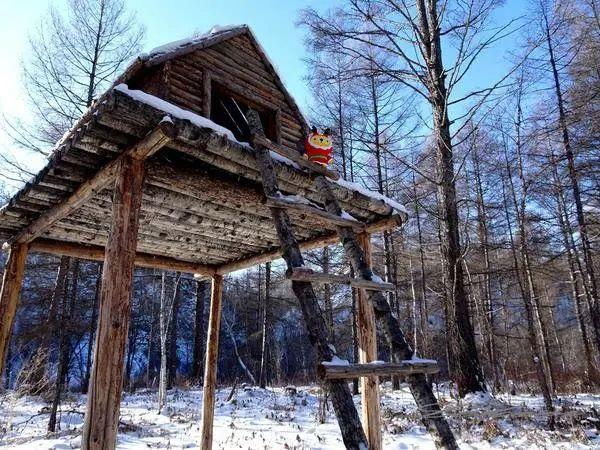 中国56个民族(五十二),鄂伦春族