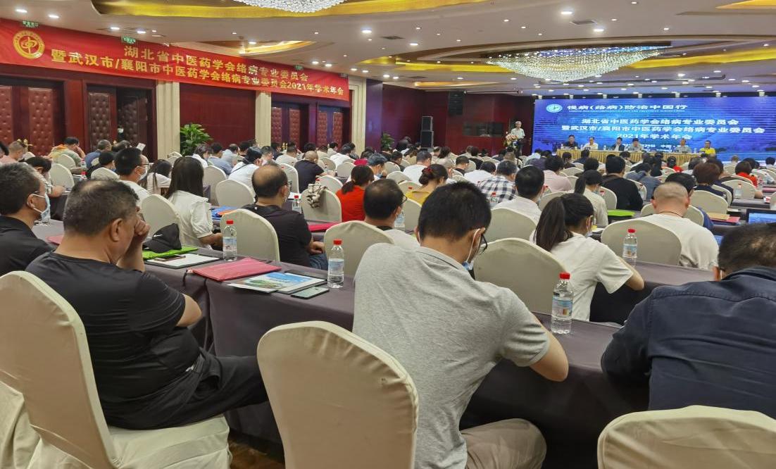 湖北省中医药学会慢病(络病)防治学术会议在襄阳召开