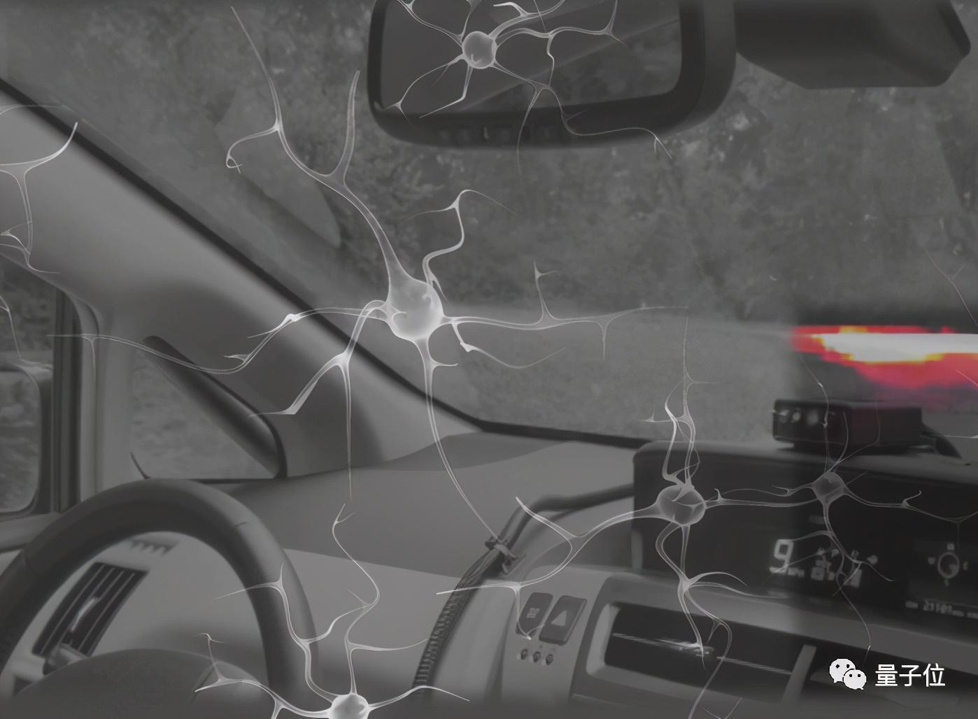 MIT用19个神经元实现自动驾驶控制,灵感来自秀丽隐杆线虫