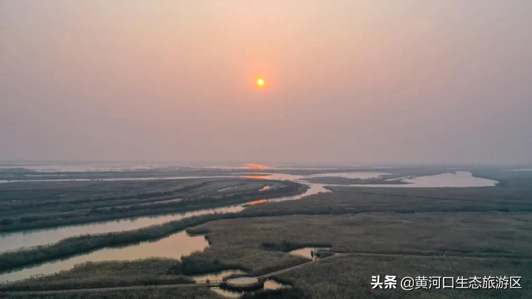 【致敬人民警察】黄河口生态旅游区诚邀全国公安民警免费游
