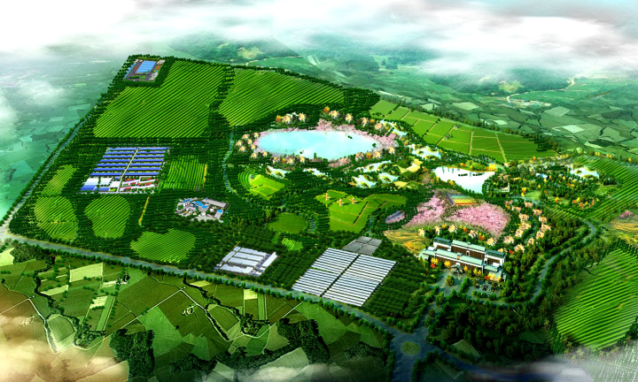阿根廷专家团队来访胜伟,联合打造国内一流的安格斯牛推广基地