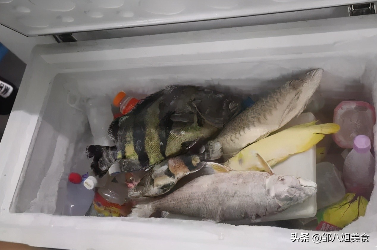 给鱼解冻,记得在水里加两个料,比直接用水泡效果好,吃着仍鲜美