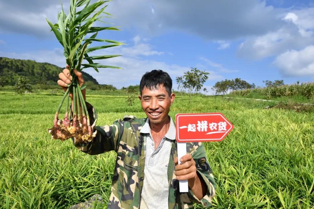 农业为何不是理想的创业赛道?