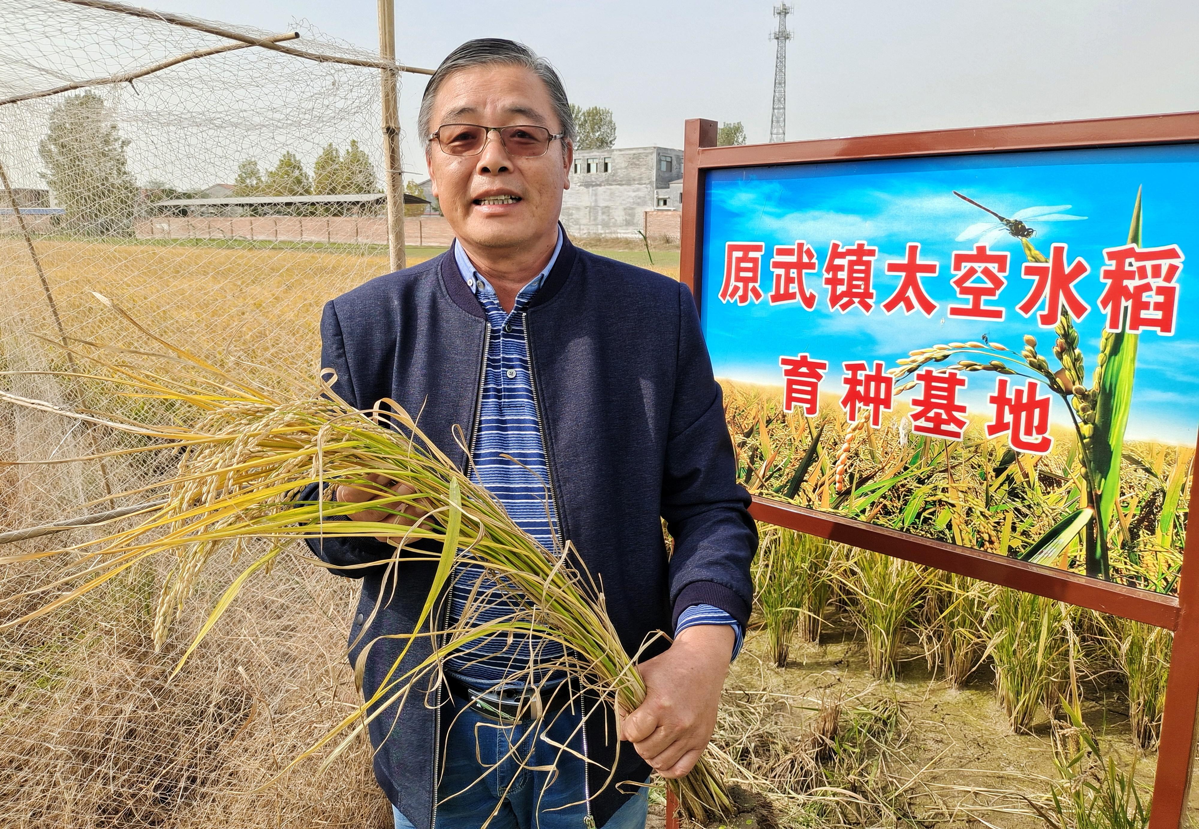 """""""稻""""路越走越宽 新乡平原示范区第三届稻米文化节开幕"""
