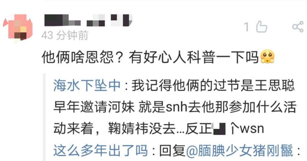 王思聪又针对鞠婧祎?女方肖像权案败诉,索要40万未果还倒贴钱