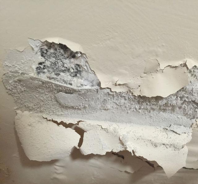 地下室潮湿发霉,有必要装新风除湿机吗?