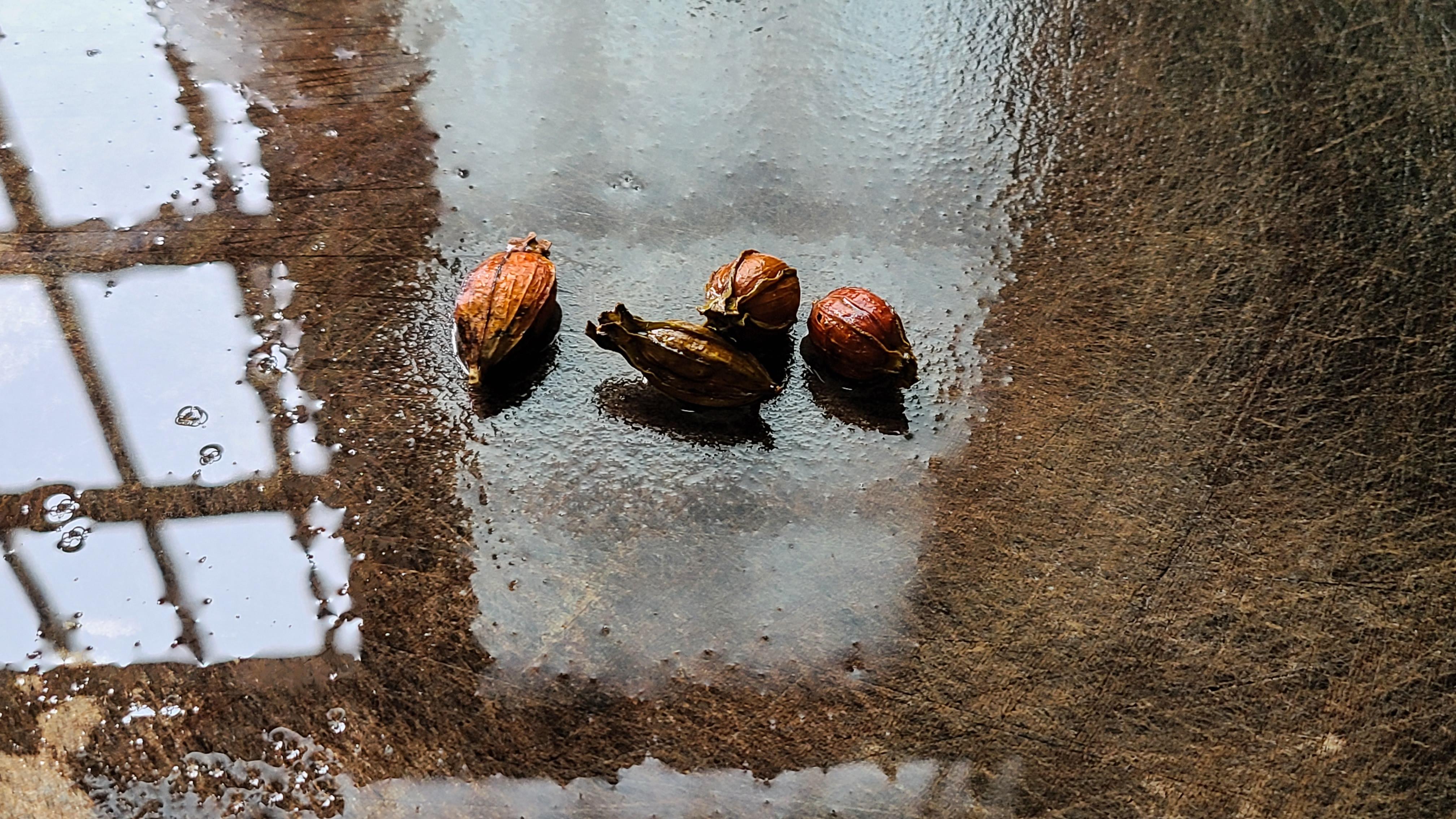 廣東鹽焗雞翅的做法,教你輕鬆做出來,鹹香好吃,吃著太爽了