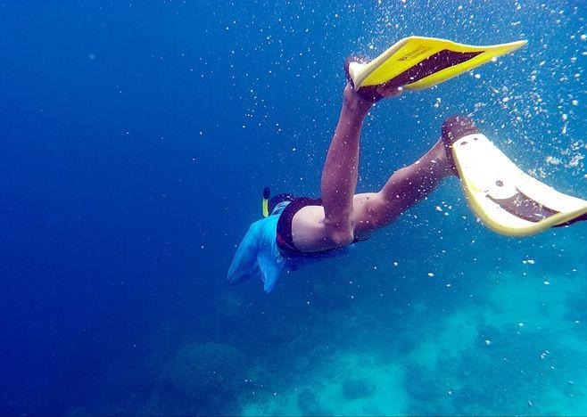 潛水必備的裝備有哪些,看到千萬別錯過