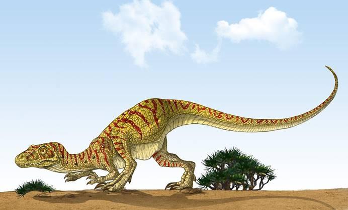 霸王龙的亲戚被找到了!科学家发现和霸王龙同一祖先的全新物种-第5张图片-IT新视野