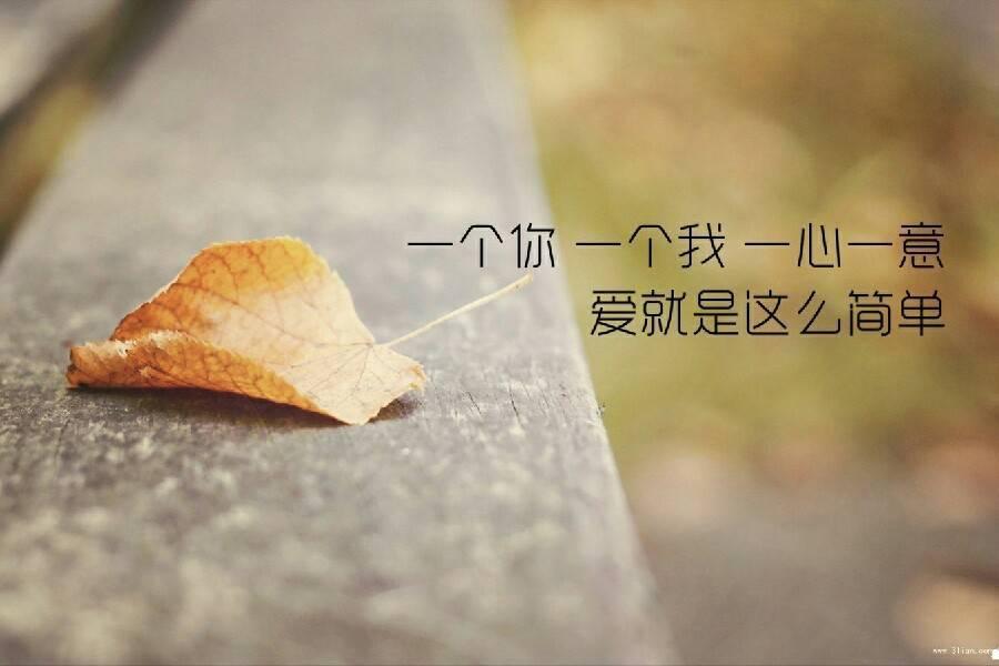 谈恋爱就像开车,车坏半路了。新手会找人哭诉,而老司机换上备胎