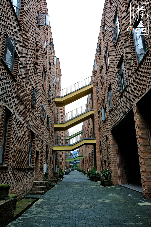 四川美术学院,身在重庆却不改名,全是因为名气太大