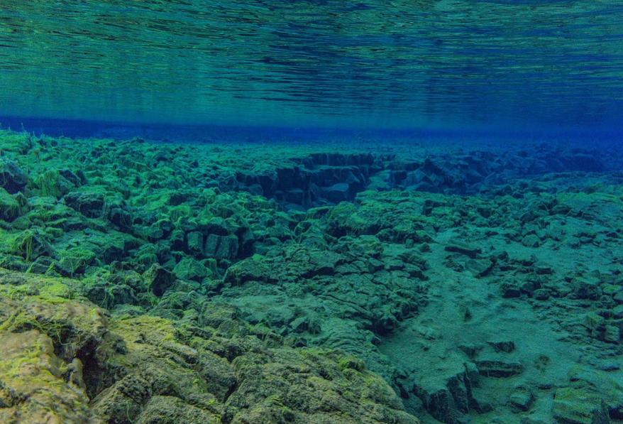 120℃的深海沉积物中,发现了有机生命体