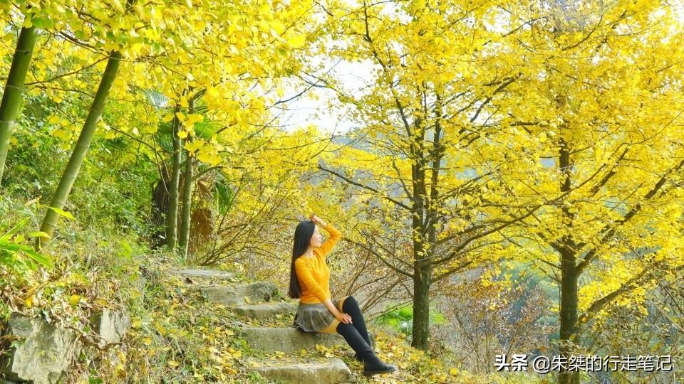 一座鮮為人知的皖南古村落,藏在崇山之中,秋景卻美到讓世界驚豔