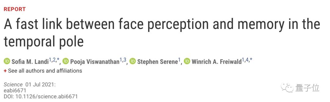 """""""好像在哪见过你""""现在有了科学解释,一群脑细胞帮你回忆那张脸"""