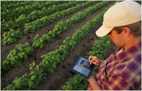 国内农业不如国外农业?一组数据揭露真相,中国已迈出关键一步