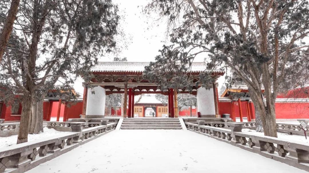 冬春季武威游玩攻略(二)历史文化游